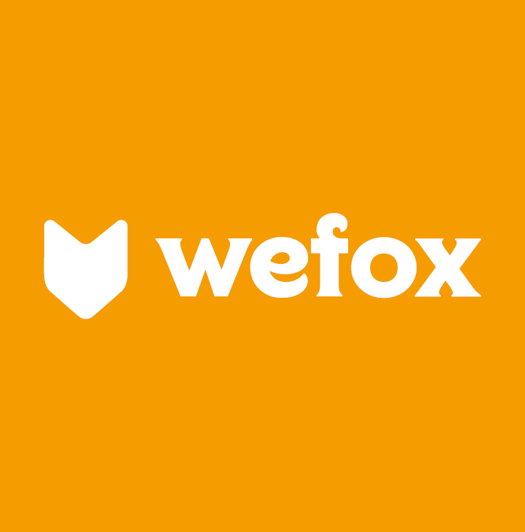 wefox austria GmbH - Waidhofen/Ybbs